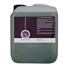 Nanolex Reactivating Shampoo, 5 l